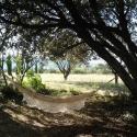Hamac à  la ferme du désert Vaucluse